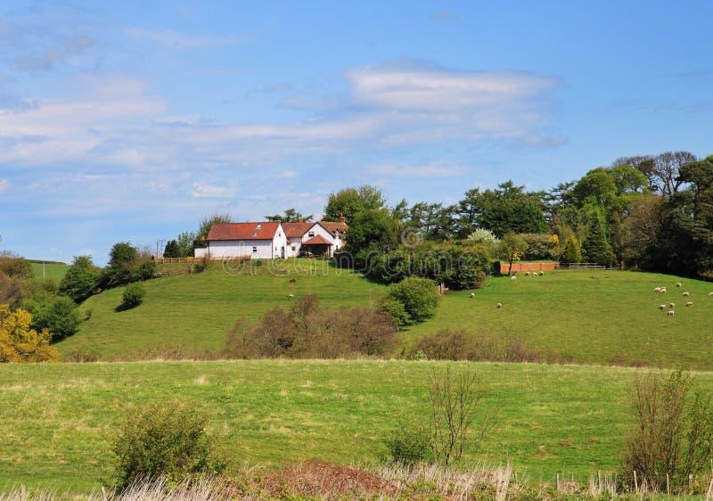 Eine englische landwirtschaftliche Landschaft lizenzfreie stockbilder