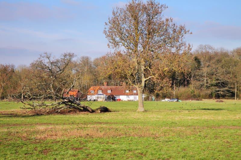 Eine englische landwirtschaftliche Landschaft im Wintersonnenschein stockfotos