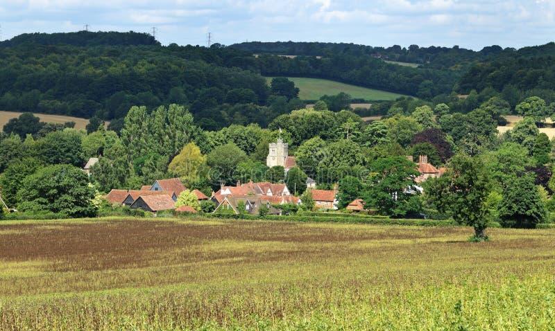 Eine englische landwirtschaftliche Landschaft mit reifendem Mais stockfotos