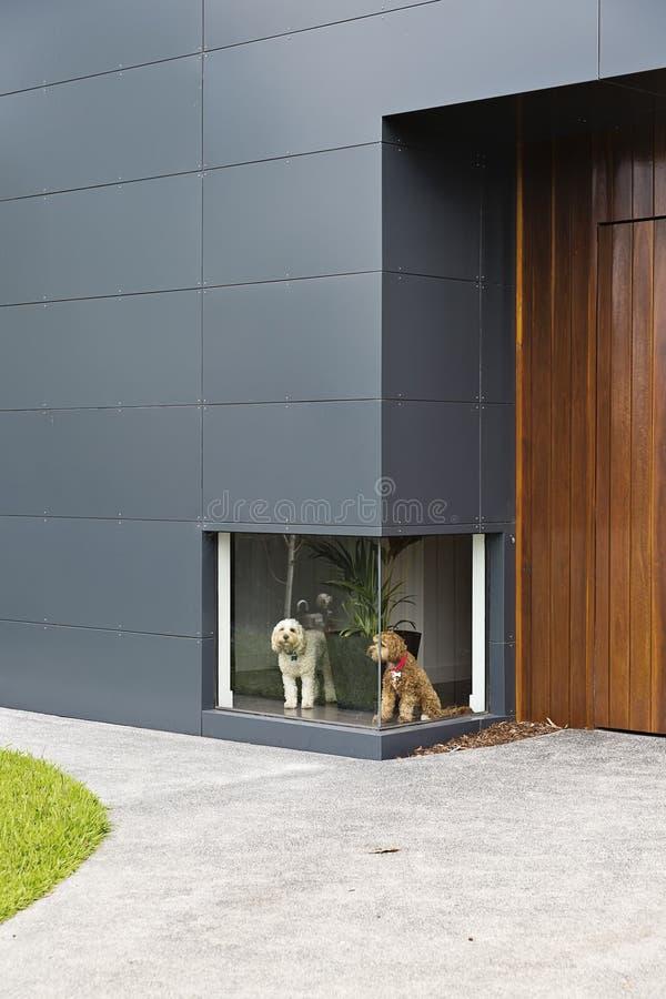 Braune Kunststofffenster braune wei streichen size of turen abschleifen und streichen