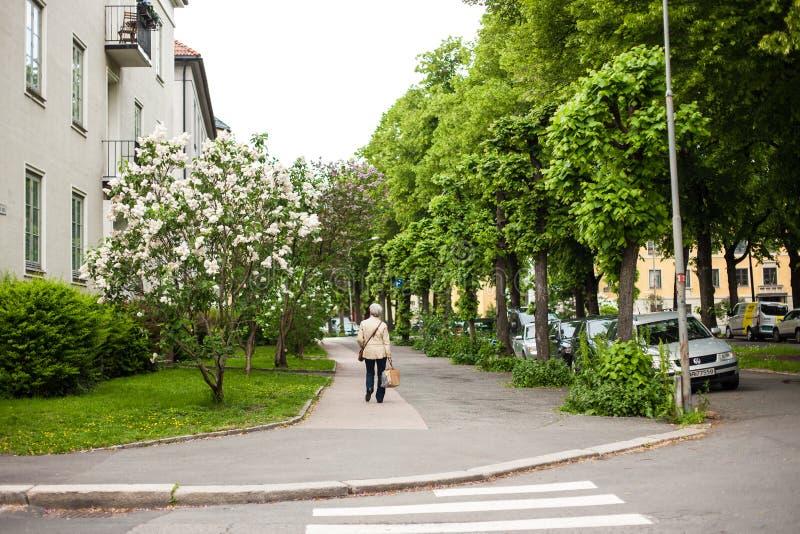 Eine Frau der älteren Personen kreuzt die Straße in Oslo, Norwegen stockfoto