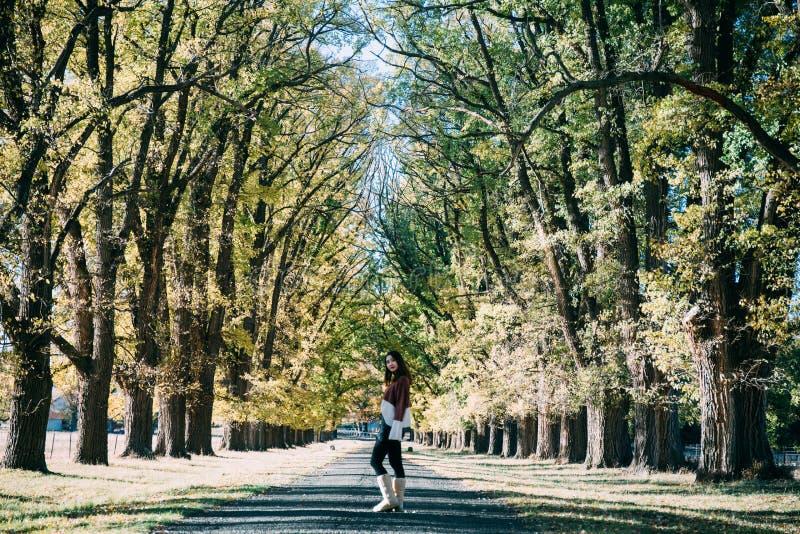 Eine Frau, die im Waldgehweg, Herbst steht stockfotografie