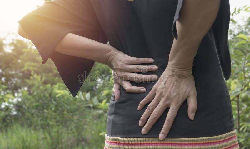 Eine Frau, die unter Rückenschmerzen leiden, Rückenmarksverletzung und Muskel geben heraus lizenzfreies stockbild
