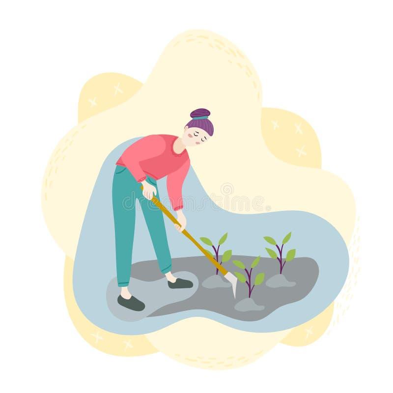 Eine Frau mit einer Hacke bohrt Sämlinge auf dem Feld Pflanzen, Ernten, arbeitend im Garten Jahreszeitlandwirtschaftsernte-Arbeit vektor abbildung