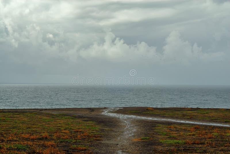 Eine Fußspur, die heraus zu den Rand einer Küstenklippe führt lizenzfreie stockfotografie