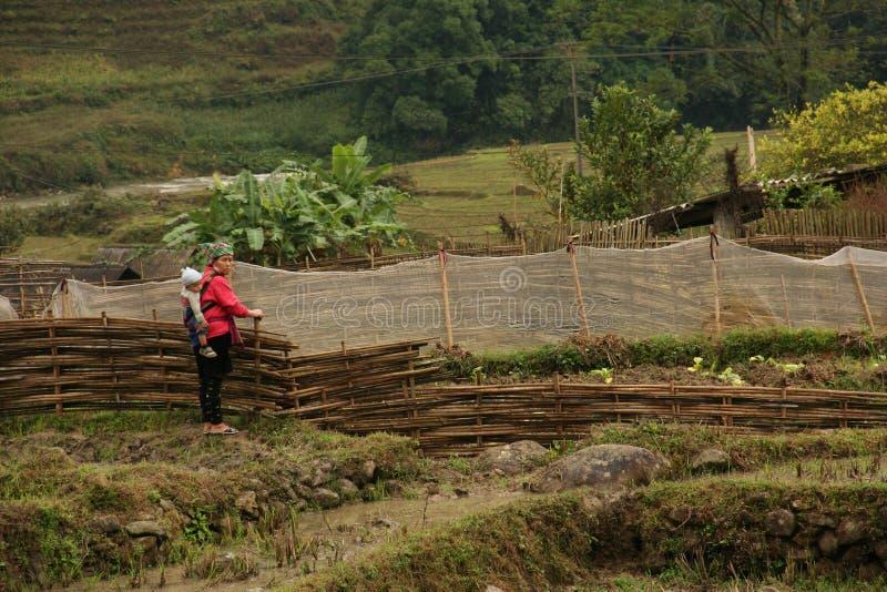 Eine gebürtige Frau Sa-PAs, ihr Kind auf ihr, Wanderungen durch ihren Bauernhof zurückbringend lizenzfreie stockbilder