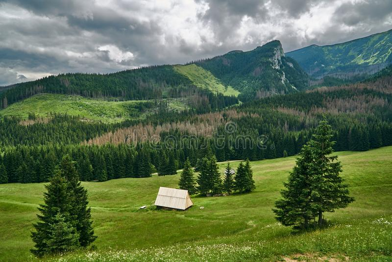 Eine Gebirgshütte an der Frühlingswiese stockbilder
