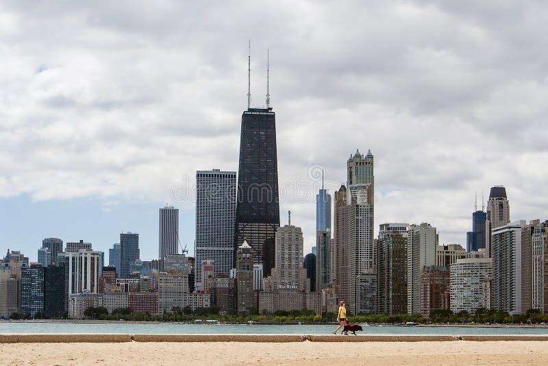 Eine gehende Frau ihr Hund vor den Chicago-Skylinen stockfotografie