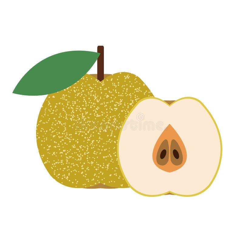 Eine gesunde organische asiatische Birne lizenzfreie abbildung