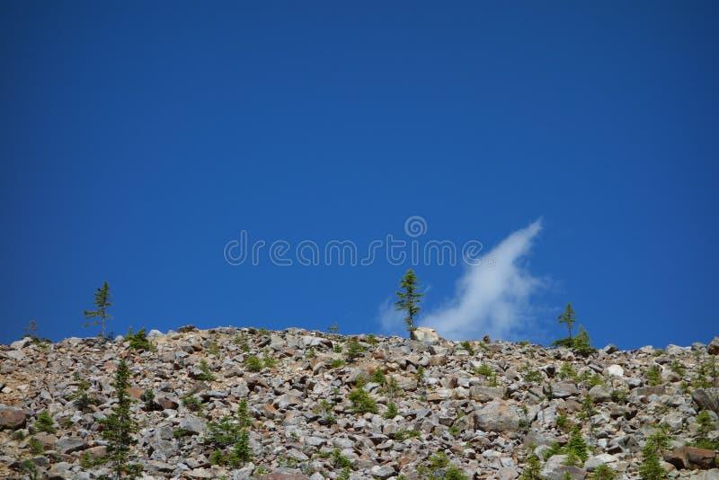 Eine Glazial- Szene in den schönen felsigen Bergen stockfotografie