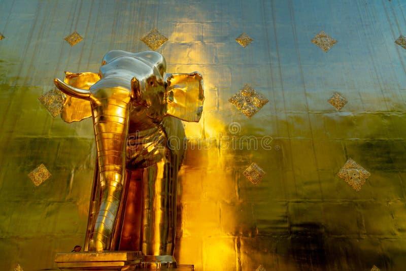 Eine goldene Elefantstatue auf der goldenen Pagode an Wat Prasing-Tempel stockfotos