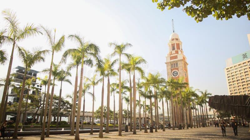 Eine grüne Gasse von Palmen in Hong Kong Der berühmte Turm mit einer Uhr Architekturanblick der Stadt und der Straße lizenzfreies stockfoto