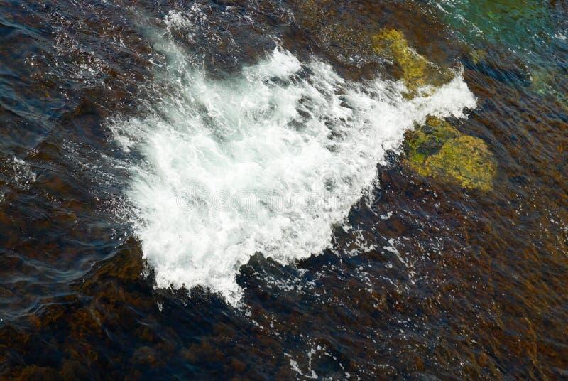 Eine große Welle und die braunen Algen stockbild