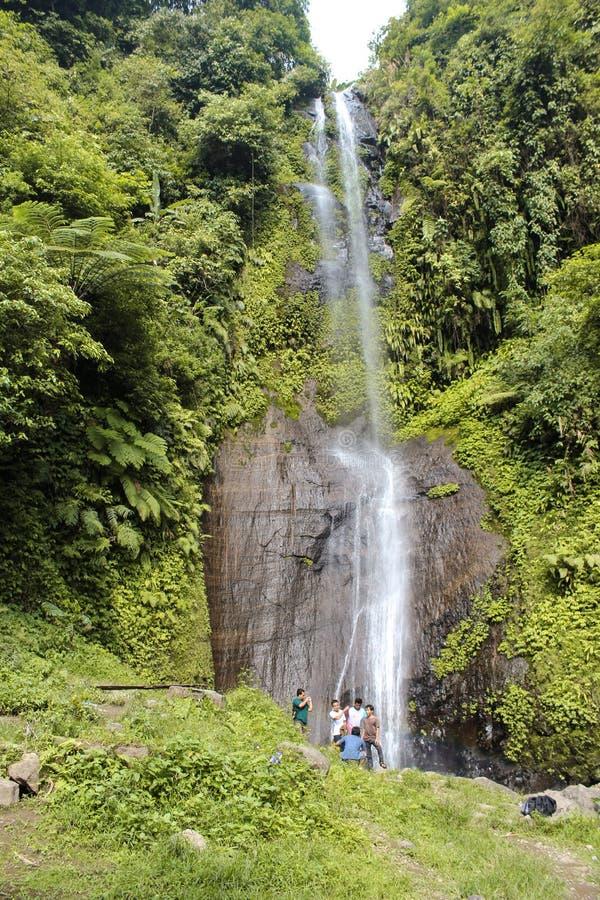 Eine Gruppe des Touristen tropische Wasserfallansicht genießend stockbild