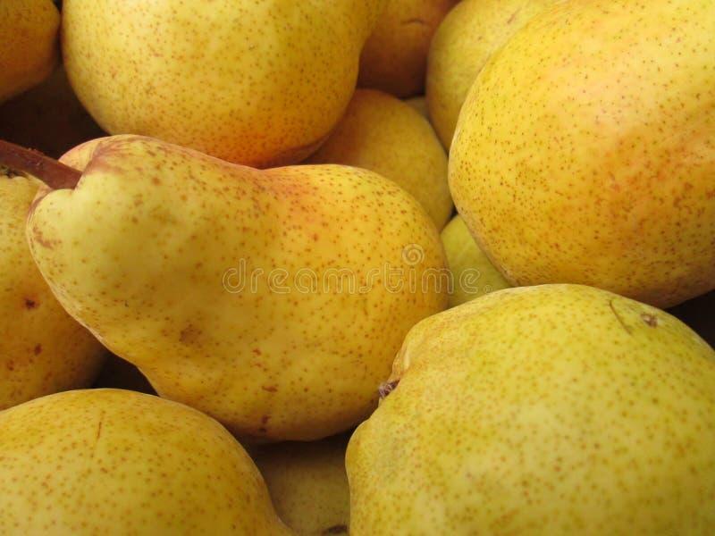 Eine Gruppe gelbe Birnen stockfoto