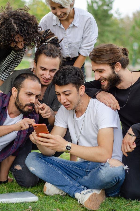 Eine Gruppe junge Leute arbeiten im Park mit Handys Sie passen Spaßsachen am Telefon auf stockbilder