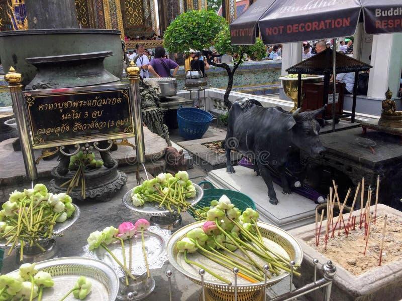 Eine Gruppe Lotosblumen gelegt außerhalb Wat Phra Kaews und des großartigen Palastes in Bangkok, Thailand lizenzfreie stockbilder