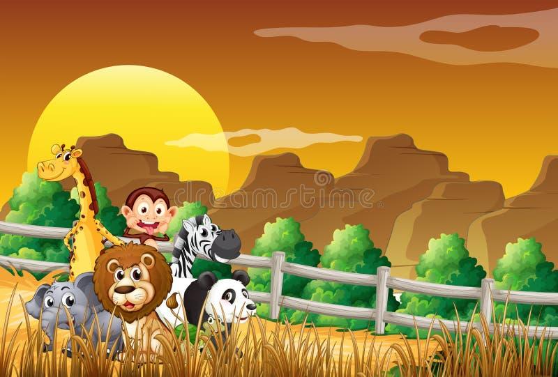 Eine Gruppe Tiere am Holz lizenzfreie abbildung