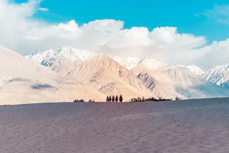 Eine Gruppe von Personen genießen, ein Kamel zu reiten, das auf eine Sanddüne in Hunder geht, ist Hunder ein Dorf im Leh-Bezirk v stockfoto