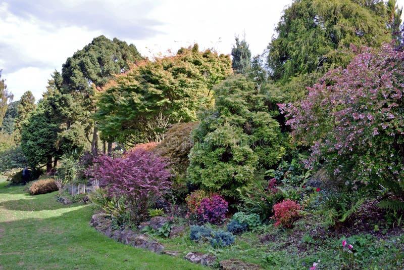 Eine gut gefüllt Hecke voll des Baums, der Sträuche, der Blumen und der Anlagen aller verschiedenen Formen und Größen lizenzfreies stockfoto