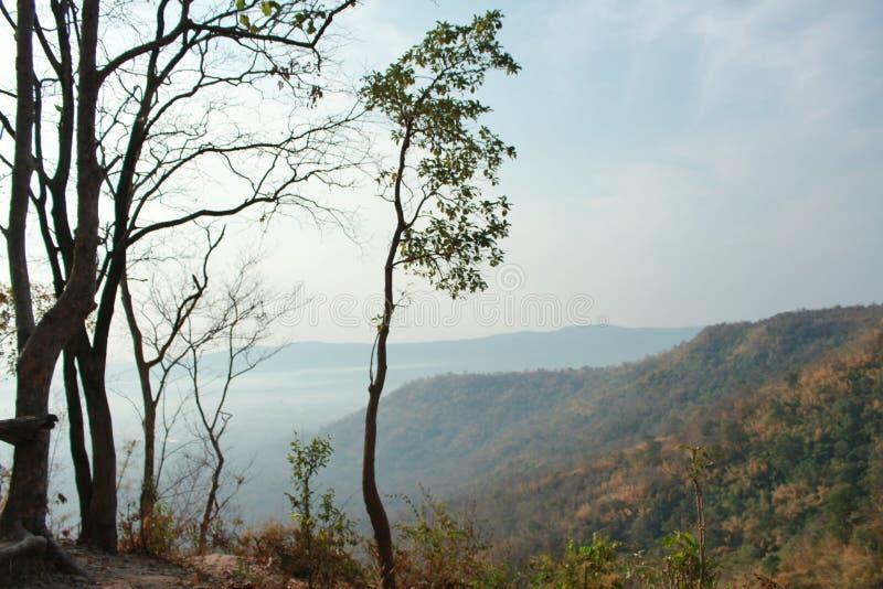 Eine gute Ansicht der Umgebung und ich kann den blauen Himmel sehen lizenzfreies stockbild