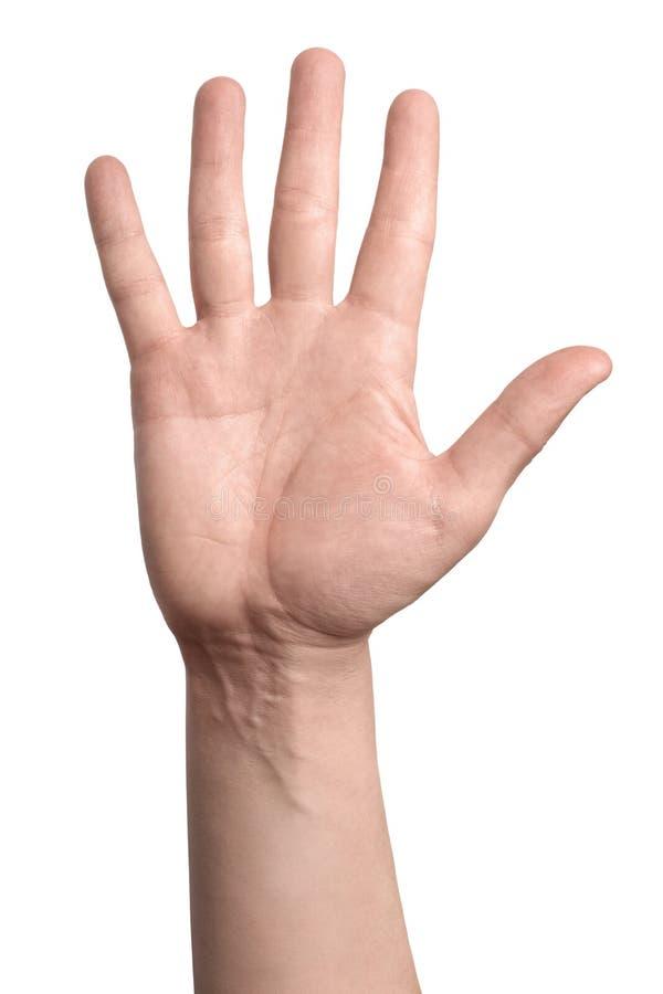 Eine Hand, lokalisiert auf weißem Hintergrund stockbilder