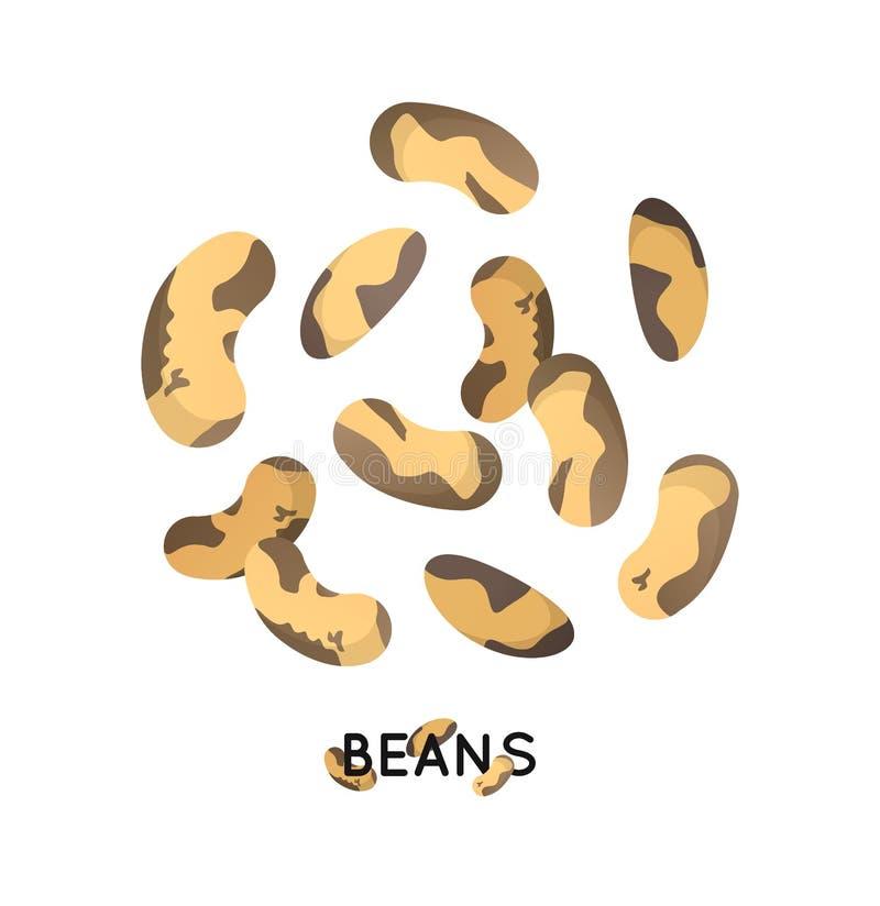 Eine Handvoll des Bohnensamens Landwirtschaftskulturbohne sät Ikone Getreidebohnenillustration stock abbildung