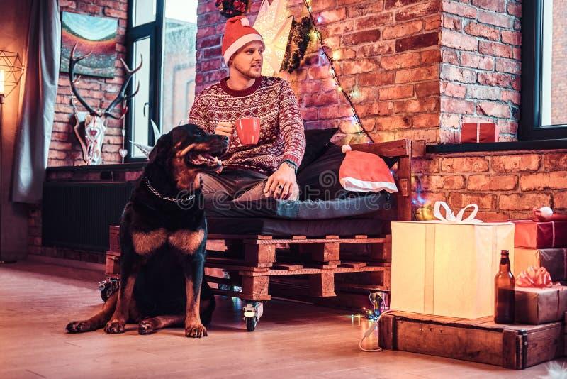 Eine Holdingschale des jungen Mannes mit Kaffee während der Weihnachtszeit mit seinem netten Hund in einem verzierten Wohnzimmer lizenzfreies stockbild