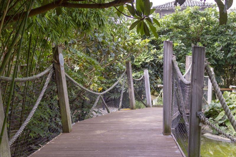 Eine Holzbrücke im Park, London, Vereinigtes Königreich lizenzfreie stockbilder
