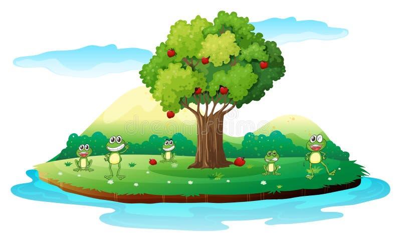 Eine Insel mit Fröschen stock abbildung