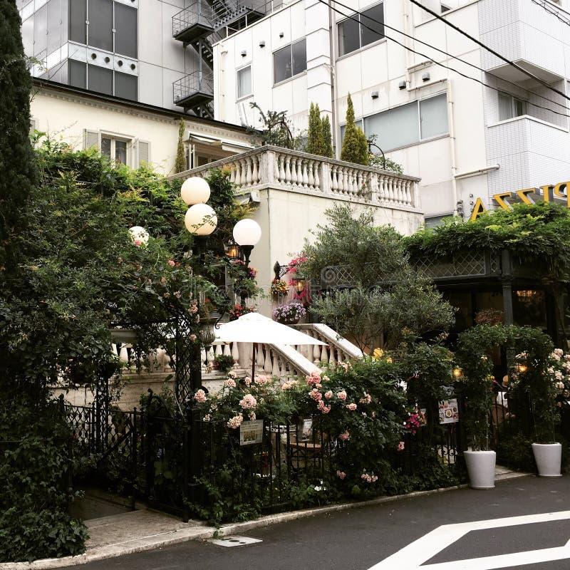 Eine italienische versteckte Restaurantküche blüht Baum ganz über Haus Außen-omotesando Tokyo Japan lizenzfreie stockbilder