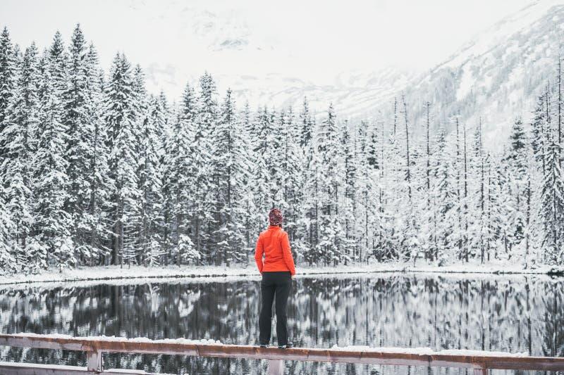 Eine junge Frau in der orange Jacke bewundert die malerische Landschaft von Wintersee R?ckseitige Ansicht stockfotos