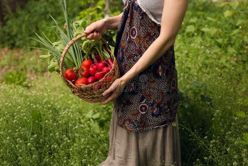 Eine junge Frau, die in den Händen einen Korb mit sortiertem organischem Frischgemüse, auf einem schönen grünen Gartenhintergrund stockbild