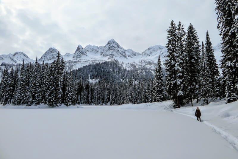 Eine junge Frau, die um Island See in Fernie, Britisch-Columbia, Kanada snowshoeing ist Der majestätische Winterhintergrund ist h stockfotos