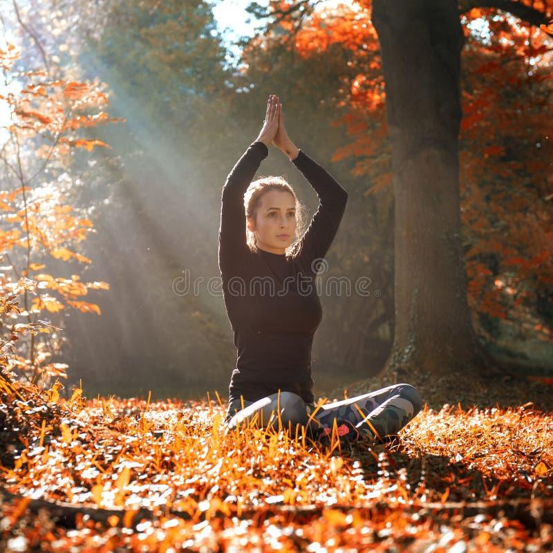 Eine junge Frau machen Yogaposition bei Sonnenaufgang im Herbstwald lizenzfreies stockfoto