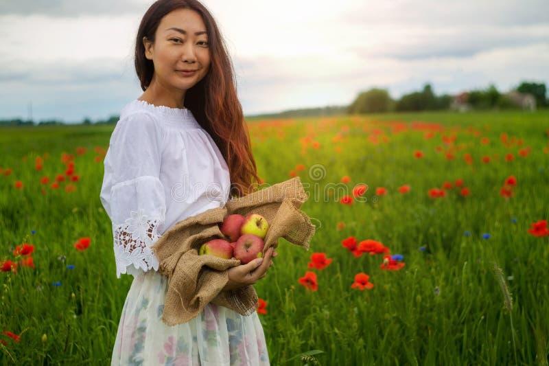 Eine junge Frau mit einem Korb von frisch ausgewählten Äpfeln auf einem Gebiet lizenzfreies stockfoto