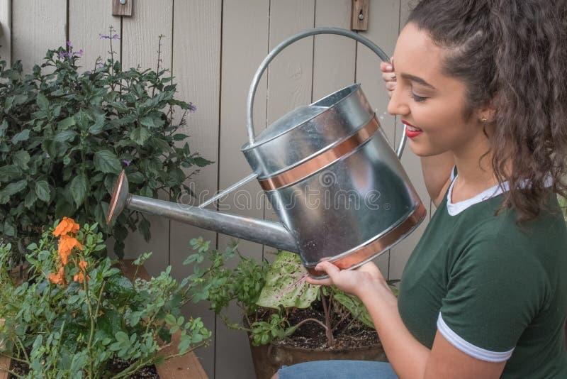 Eine junge Frau wässert ihre Anlagen lizenzfreies stockbild