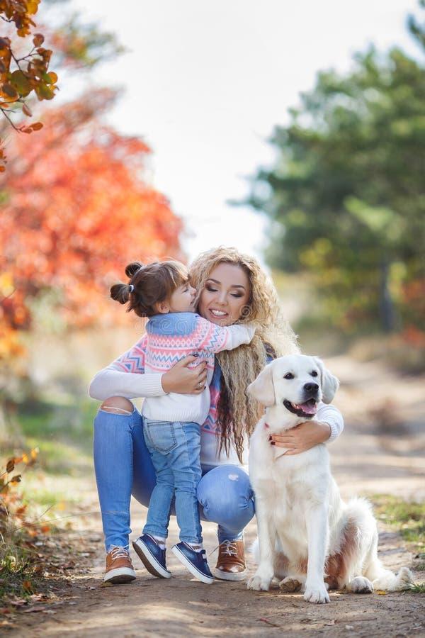 Eine junge Mutter mit einem kleinen Mädchen und zwei Hunden auf einem Weg im Park im Herbst stockfotografie