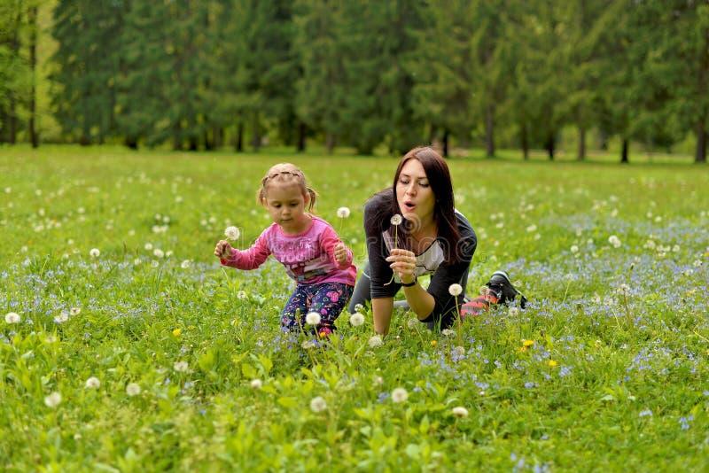 Eine junge Mutter mit einer kleinen Tochter, die auf einer grünen Wiese spielt lizenzfreies stockfoto