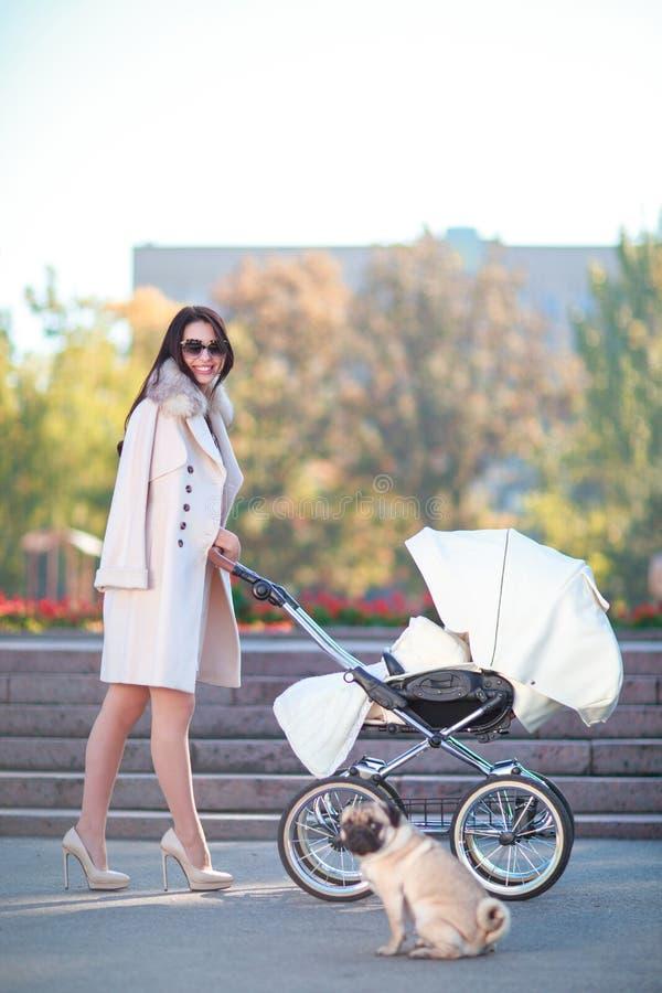 Eine junge und schöne Mutter fährt einen hellen Kinderwagen mit einem Kind und geht ein Hund lizenzfreie stockbilder