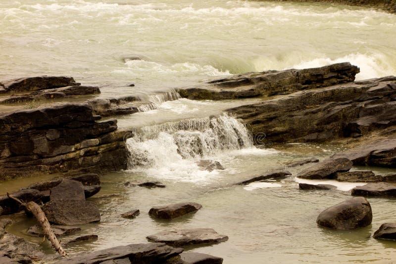 Eine Kaskade des Wasserwassers an Yellowstone-Park stockfotos