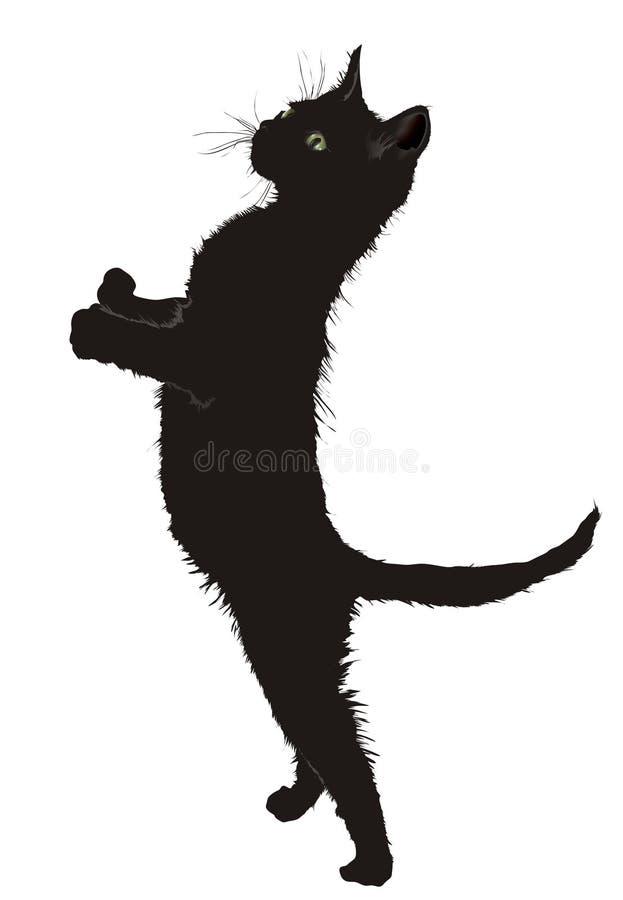 Eine Katze lizenzfreie abbildung