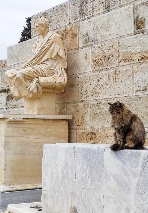 Eine Katze und ein Monument Akropolis, Athen, Griechenland lizenzfreie stockfotografie