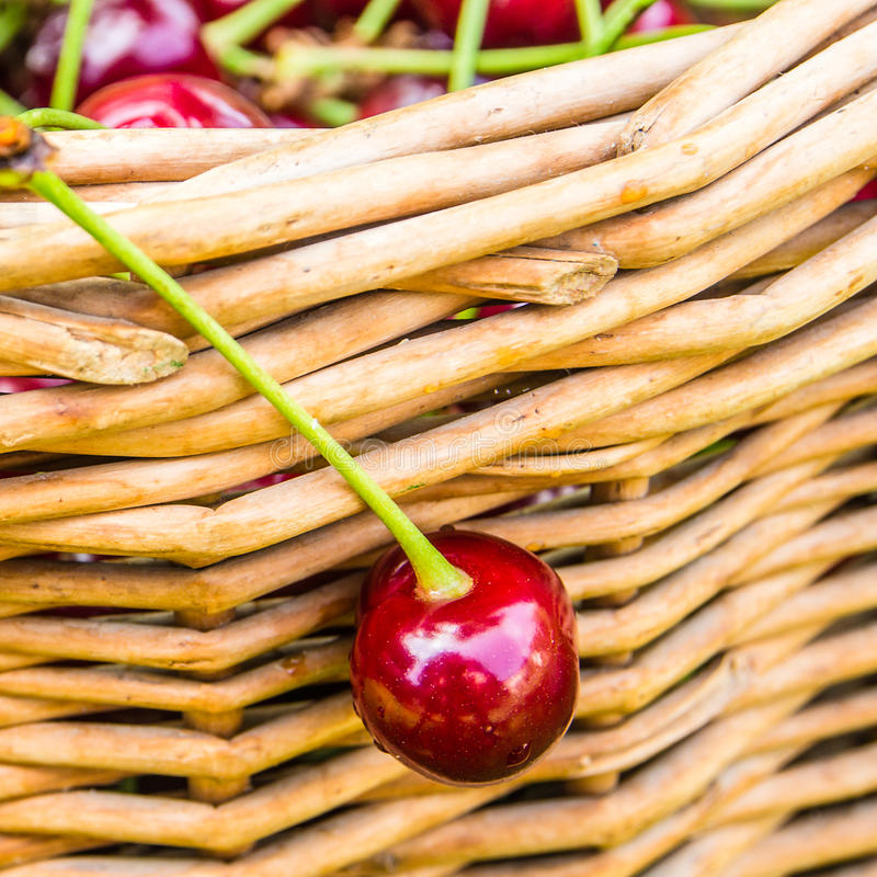 Eine Kirsche, die am Weidenkorb hängt stockbilder
