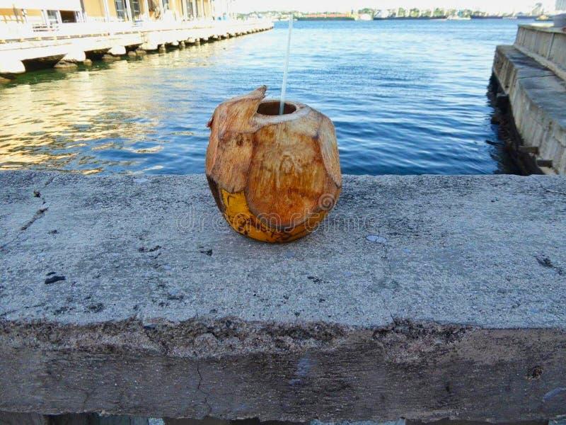 eine Kokosnussschale mit einem Trinkhalm stockbilder