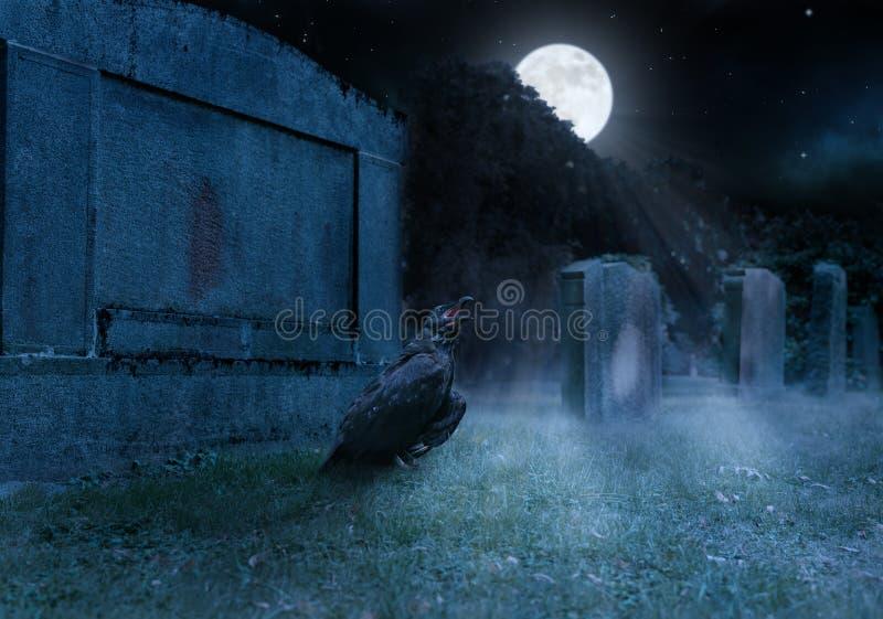 Eine Krähe sitzt auf einem Friedhof vor einem Grabstein lizenzfreie stockbilder