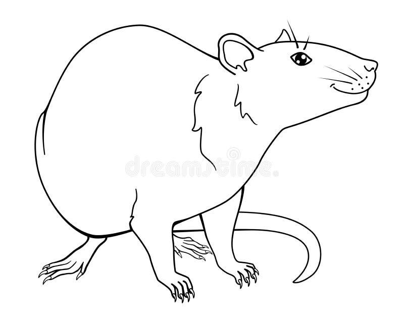 Eine lächelnde Ratte ist ein Symbol von 2020 Chinesisches neues Jahr der Ratte Ratte - lineares Vektorbild für die Färbung lizenzfreie abbildung
