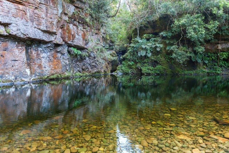 Eine Lagune mit haarscharfem Wasser mitten in dem Dschungel von Bolivien lizenzfreies stockfoto