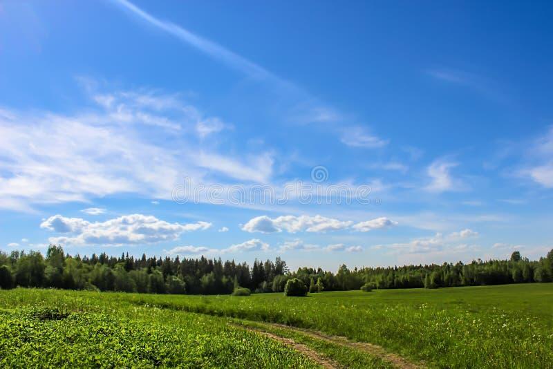 Eine Landstraße auf den Weizengebieten stockbild