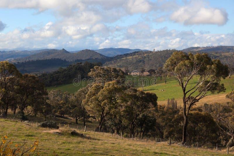 Eine landwirtschaftliche Landschaft. NSW. Australien. lizenzfreies stockbild